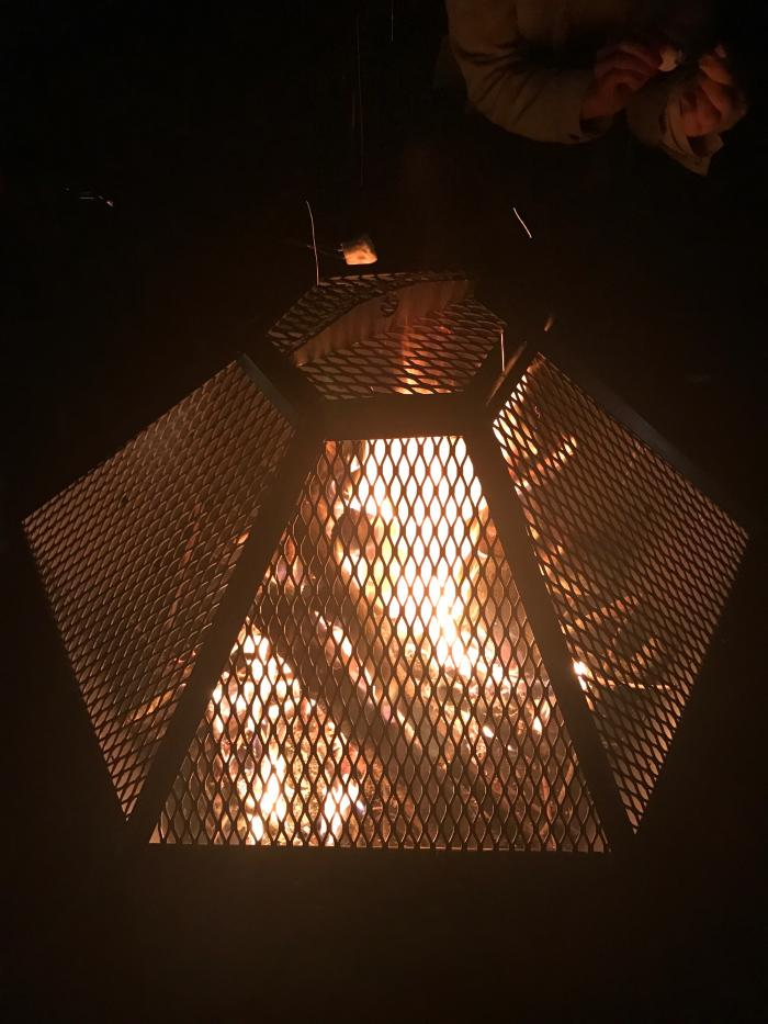 fire with screen.JPG
